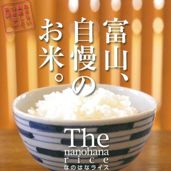 8町米高黄金/5kg[生产者直销的味道好的健康食品]