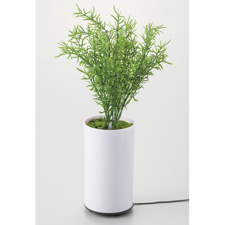 グリーンディフューザー B アロマ 芳香器 加湿 植物型 インテリア 噴霧器 空焚き防止機能 LED 癒し