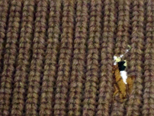 POLO RALPH LAUREN KNIT CAP(Signature Cuffed Merino Hat/6F0102/036:Brown)马球拉尔夫劳伦/编织物盖子/茶色