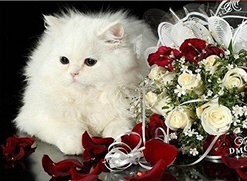 ししゅう糸 DMC糸 クロスステッチ刺繍キット 薔薇花束と白猫 (11CT 図柄印刷)