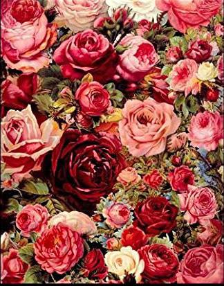 ししゅう糸 DMC糸 クロスステッチ刺繍キット 布地に図柄印刷 薔薇園BB