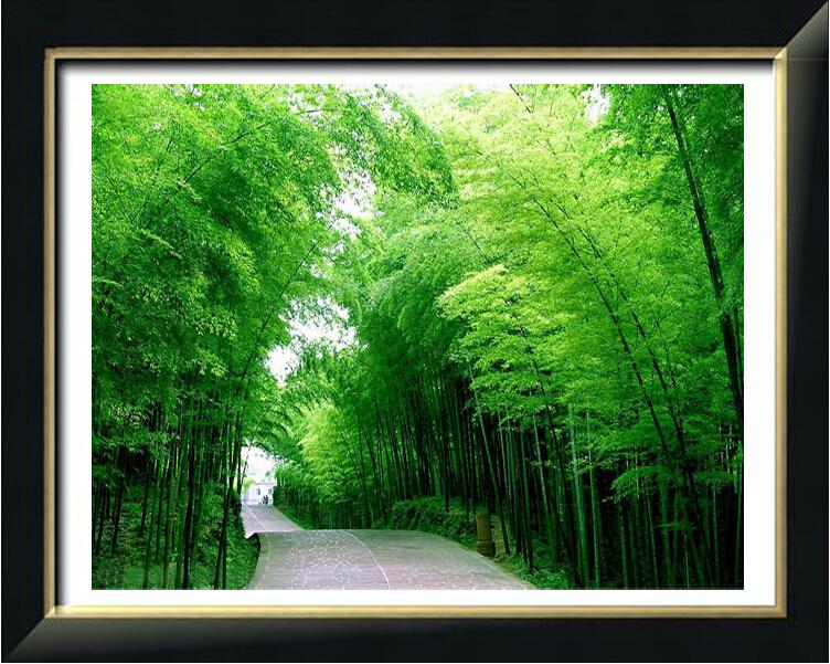 クロスステッチ 刺繍キット  DMC糸 布地に図柄印刷 竹林