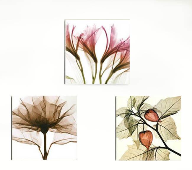 クロスステッチ 刺繍キット 3画 透明花 (DMC刺繍糸) 図柄印刷
