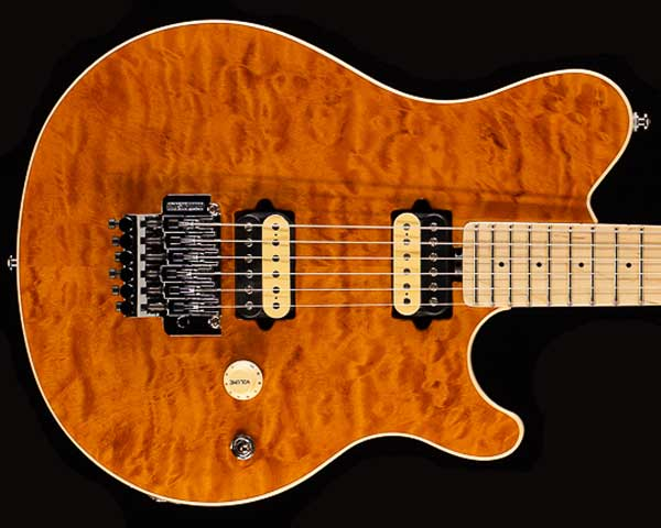 MUSICMAN(ミュージックマン)Axis Matching Matching Head Trans Gold Head Gold Quilt, ひらそ農園:6837016d --- officewill.xsrv.jp