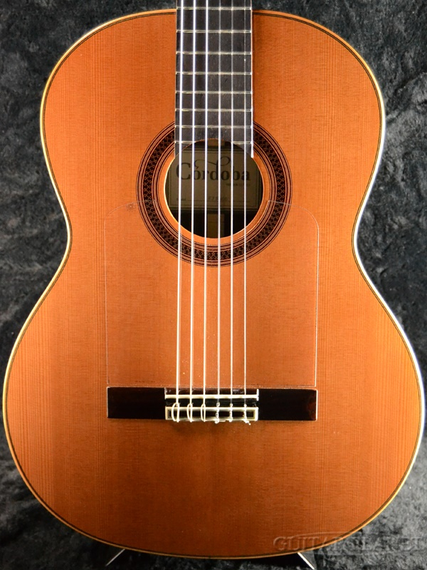 Cordoba F7 Paco 新品[コルドバ][natural,木目][Classical Guitar,クラシックギター,エレガット,フラメンコ]