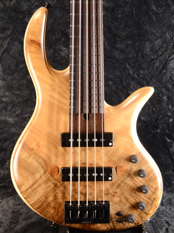 elrick Gold Series E-volution 5 -Figured Myrtle Top/Ash Back- 新品[エルリック][ゴールドシリーズ][エボリューション][5strings,5弦][Electric Bass,エレキベース]