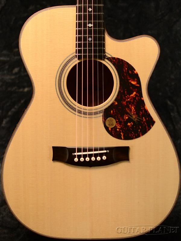 Maton EBG808C Michael Fix 新品[メイトン][Natural,ナチュラル][Blackwood,ブラックウッド][マイケル・フィックス][Electric Acoustic Guitar,アコースティックギター,アコギ,エレアコ]