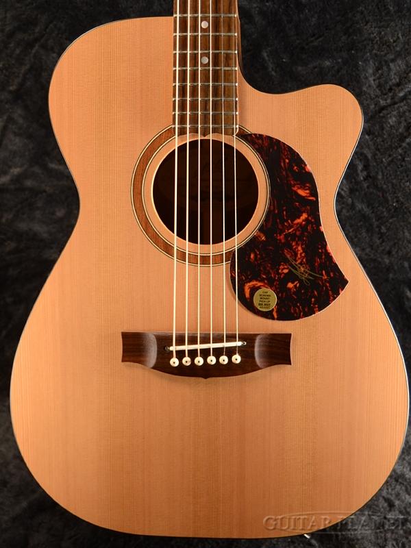 Maton SRS808C 新品[メイトン][SRS-808C][Cutaway,カッタウェイ][Black Wood,ブラックウッド][Electric Acoustic Guitar,アコギ,エレアコ,アコースティックギター]