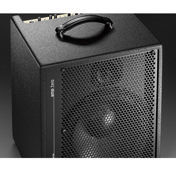 AER amp-two 新品[アコースティックベースアンプ/コンボ,Acoustic Bass combo amplifier]