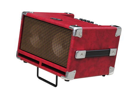 【100W】Phil Jones Bass Cub BG-100 新品 レッド[フィルジョーンズ][RED,赤][ベースアンプ/コンボ,Bass Combo Amplifier]