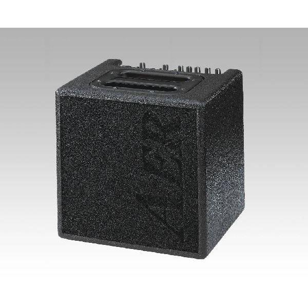【40W】AER Alpha 新品[アルファ][アコースティックギターアンプ/コンボ,Acoustic Guitar combo amplifier]