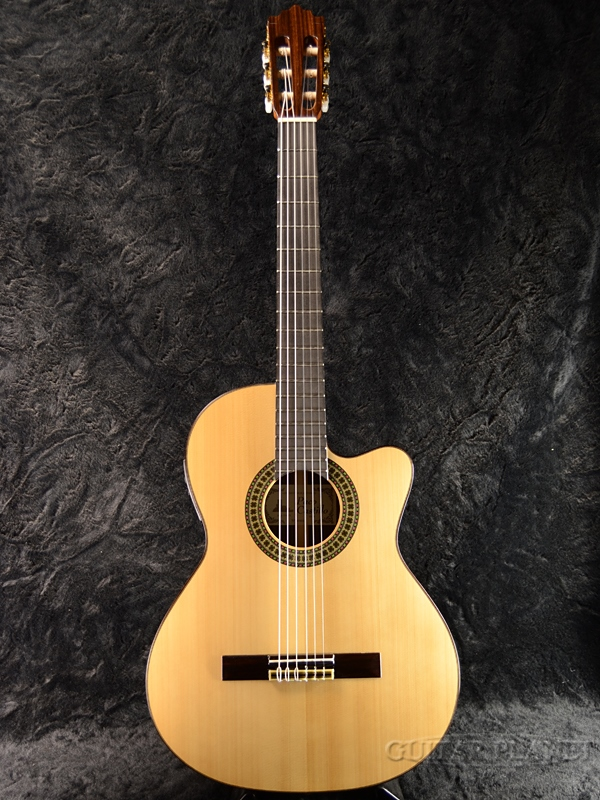 Paco Castillo 234TE Spruce NarrowNeck 新品[パコ・カスティージョ][Natural,ナチュラル][Classical Guitar,クラシックギター,エレガット]