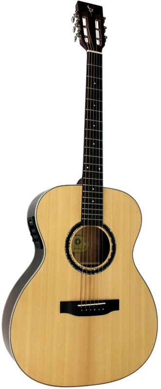 DCT H-310 SM E 新品[フィッシュマン搭載][Spruce,スプルース単板TOP][Acoustic Guitar,アコギ,アコースティックギター,Folk Guitar,フォークギター]
