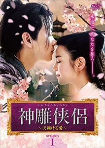 神雕侠侶~天翔ける愛~ DVD-BOX1 [DVD]