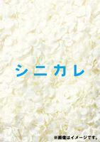 シニカレ完全版 ブルーレイBOX [Blu-ray]