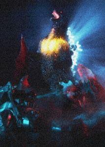 ゴジラ DVDコレクション ゴジラ V V [DVD], 水着ショップ ベタートゥモロー:7ff9fc3d --- sunward.msk.ru