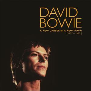 輸入盤 DAVID BOWIE / NEW CAREER IN A NEW TOWN (1977-1982) (LTD) [13LP]