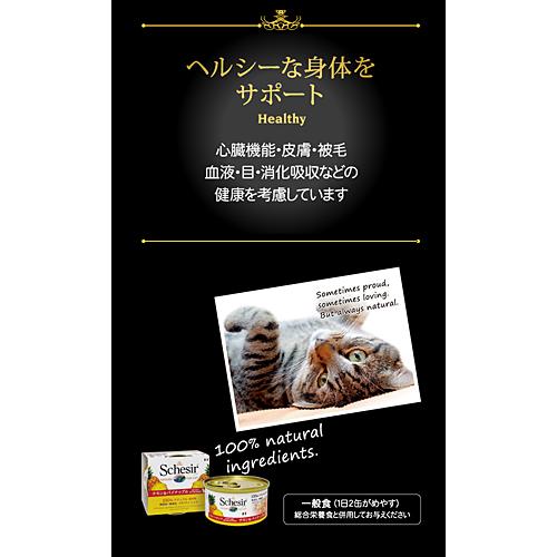 ファンタジーワールド シシア/キャット ツナ&キウイ C355 (キャットフード) 75g×14【ネコポス不可】