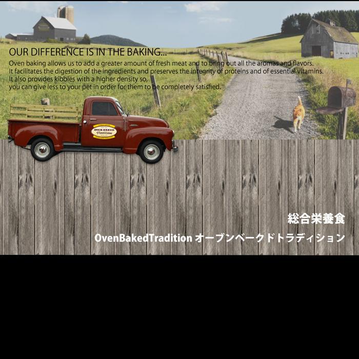 ファンタジーワールド オーブンベークド トラディション キャットフード アダルトチキン 9705-2.5 (キャットフード) 1.13kg【ネコポス不可】