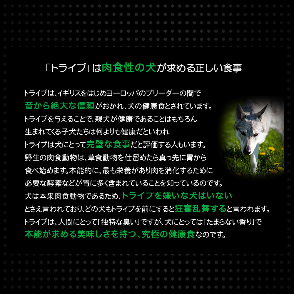 ファンタジーワールド ニュートライプ ダック&グリーントライプ NUT3789 (ドッグフード) 95g×24【ネコポス不可】