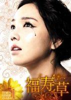 福寿草 DVD-BOX5 [DVD]