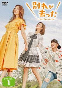 別れが去った~マイ・プレシャス・ワン~ DVD-BOX1 [DVD]