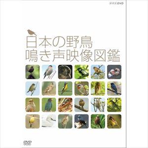 定価の67%OFF 日本の野鳥 オリジナル 鳴き声映像図鑑 DVD