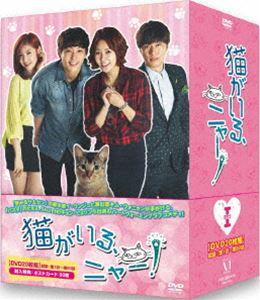 猫がいる、ニャー! DVD-BOXI [DVD]