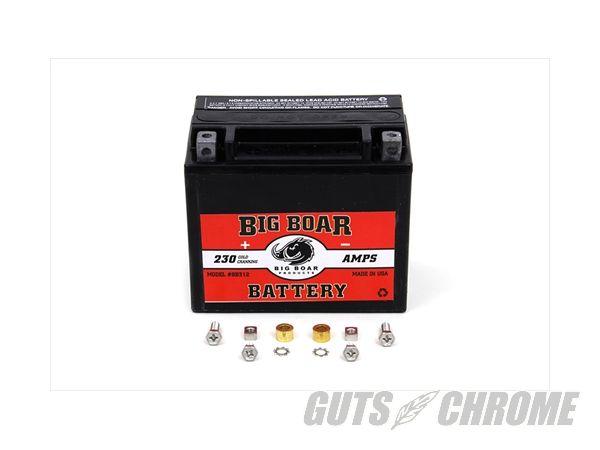 【取寄】53-0702 バッテリー, ビッグ BOAR ミニ Custom application
