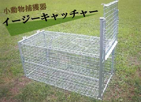 ■小動物捕獲器 イージーキャッチャー rk10 害獣駆除 ヌートリア アライグマ アナグマ ハクビシン 野猫
