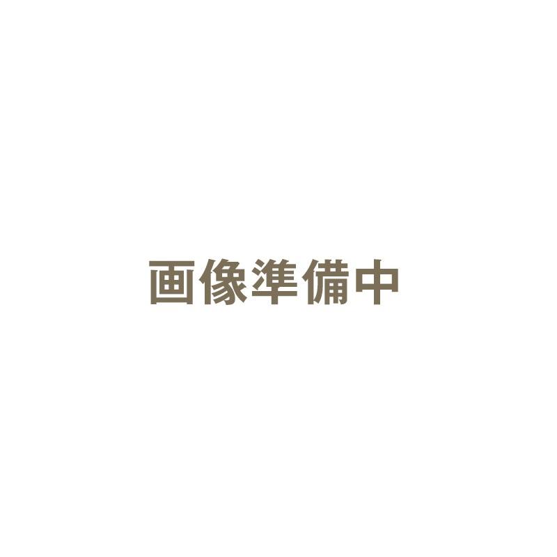 ハッコー デジタルパーミングアイロン 10mm コテ型|カールヘアアイロン カールヘアーアイロン カールアイロン カール ヘアアイロン ヘアーアイロン アイロン デジタルパーミング パーミングアイロン パーミング【送料無料】