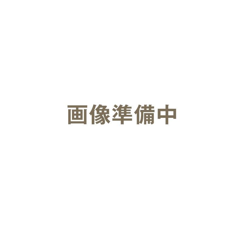 【クーポン対象11日01:59迄】ハッコー デジタルパーミングアイロン 13mm クリップ型|カールヘアアイロン カールヘアーアイロン カールアイロン カール ヘアアイロン ヘアーアイロン アイロン デジタルパーミング パーミングアイロン
