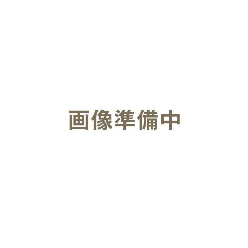 ハッコー デジタルパーミングアイロン 16mm クリップ型|カールヘアアイロン カールヘアーアイロン カールアイロン カール ヘアアイロン ヘアーアイロン アイロン デジタルパーミング パーミングアイロン【送料無料】