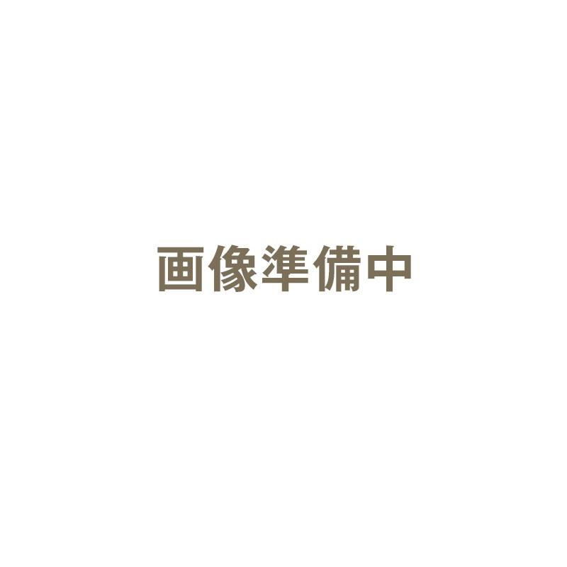 ハッコー デジタルパーミングアイロン 22mm クリップ型|カールヘアアイロン カールヘアーアイロン カールアイロン カール ヘアアイロン ヘアーアイロン アイロン デジタルパーミング パーミングアイロン【送料無料】