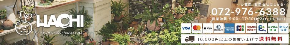 アクアプラントポットのお店HACHI:吸水、保水力の高い鉢として特許出願中のアクアプラントポット