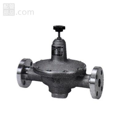 フシマン:減圧弁(微圧制御・中容量) フランジ接続 型式:PLG41-20D