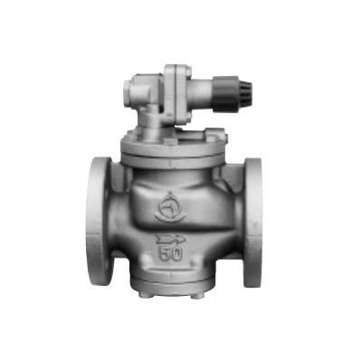 ベン:減圧弁(弁天シリーズ(蒸気用) 型式:RP6-G-50