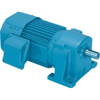 シグマー技研:シグマー 三相SG-P1ギアモーター 出力0.2Kw 減速比1/50 TML2-02-50 型式:TML2-02-50