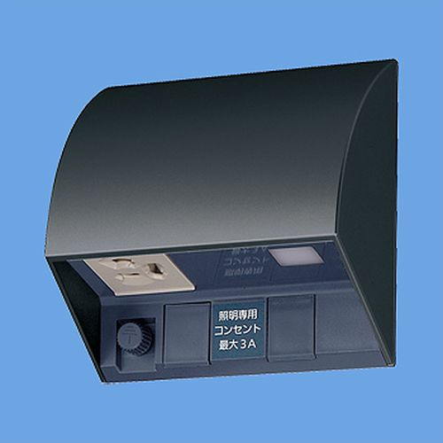 パナソニック:スマート電子EEスイッチ付フル接地防水コンセント 型式:EE4553B