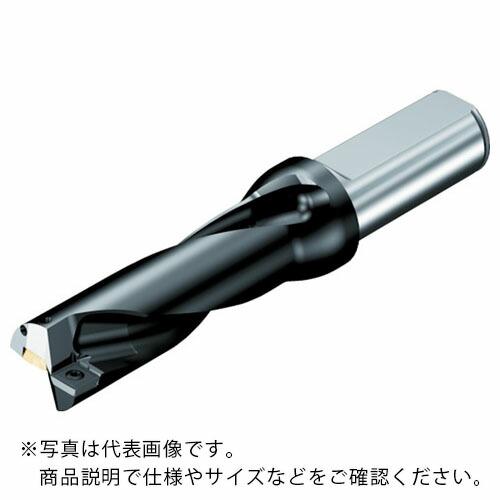 日本に サンドビック ) スーパーUドリル 円筒シャンク 880-D3600L40-02 ( 880D3600L4002 880-D3600L40-02 880D3600L4002 ) サンドビック(株)コロマントカンパニー, トマトショップ:990f53ef --- annhanco.com