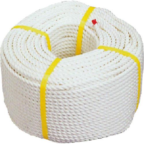 <title>条件付送料無料 梱包用品 シート 新色 ロープ デンサン クレモナSロープ9×200 DPK-0952 DPK0952 ジェフコム 株 メーカー取寄</title>