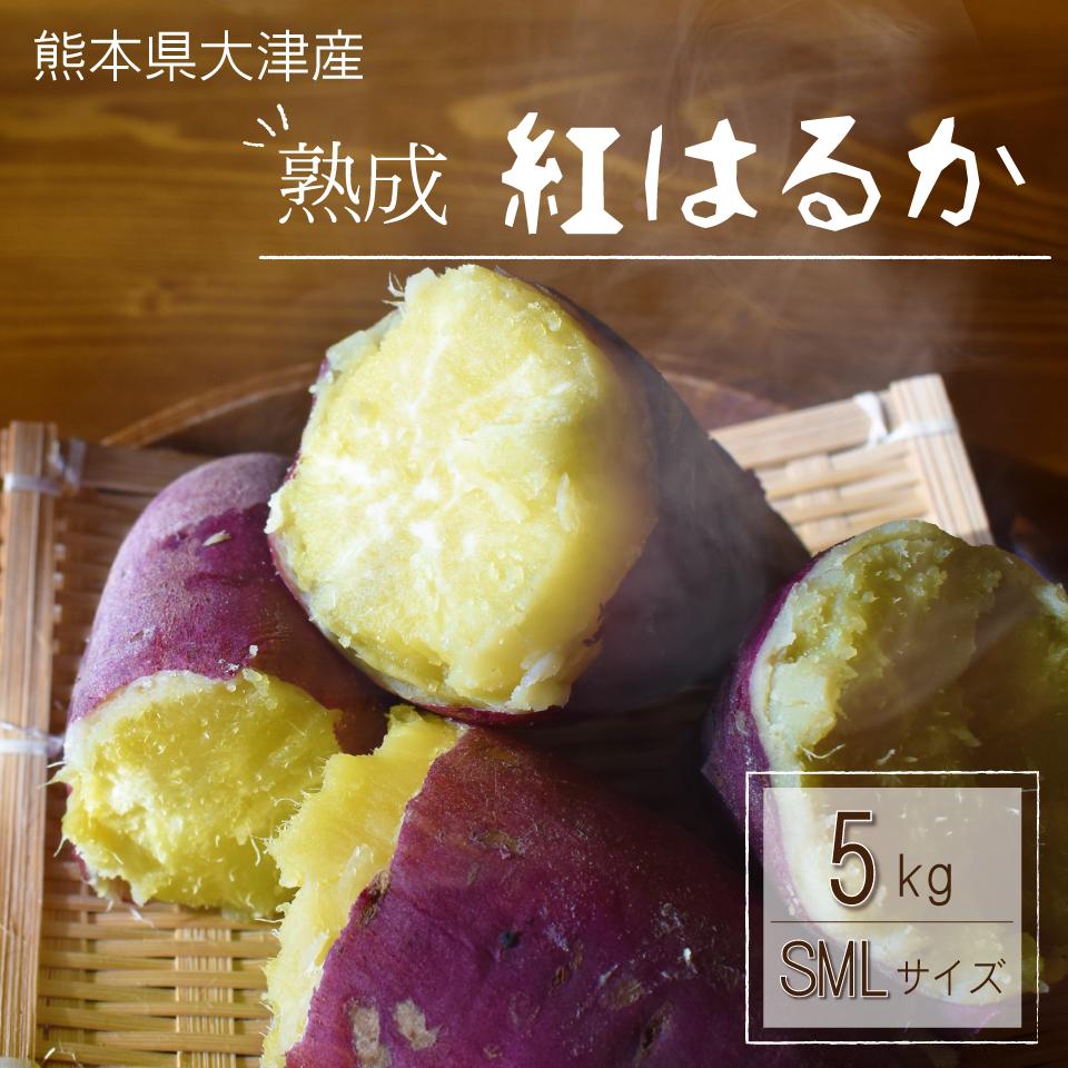 12/20以降発送【さつまいも5kg】サツマイモ からいも 九州産 熊本県産 熊本県大津産 数量限定 特別価格 熊本県産 美味しいさつまいも 5kg 送料無料