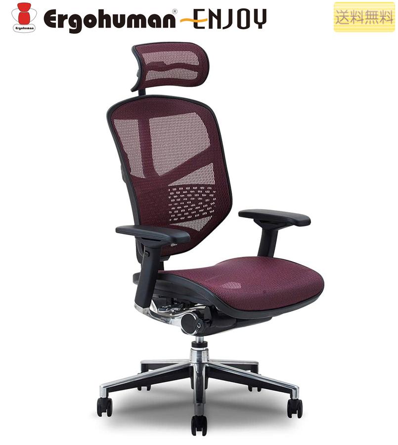 ビジネスチェア オフィスチェア ハイタイプ ロータイプ エルゴヒューマン エンジョイ ergohuman enjoy キャスター ヘッドレスト アーム付 調節機能 メッシ EJ-HAM/EJ-LAM