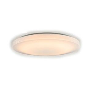 NEC LEDシーリング SLDZE14569L 1台 14畳用 電球色 調光タイプ リモコン付き