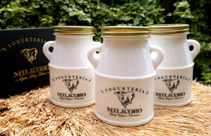 ヨーグルトセット MILK'ORO エイジングヨーグルト 3個セット 熊本県 合志市 ジャージー牛 朝食 新生活 新入学 簡便 ミルク 牧場 母の日 こどもの日 節句 父の日