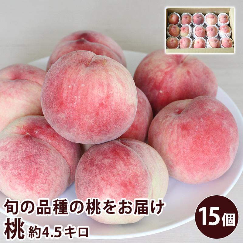 玉張りがよく 美しい 贈答用 自分用旬の桃 セール もも ピーチ フルーツ 夏ギフト 須高の桃 長野県産 約4.5キロ クール便 倉 送料無料 15個入り 旬の桃