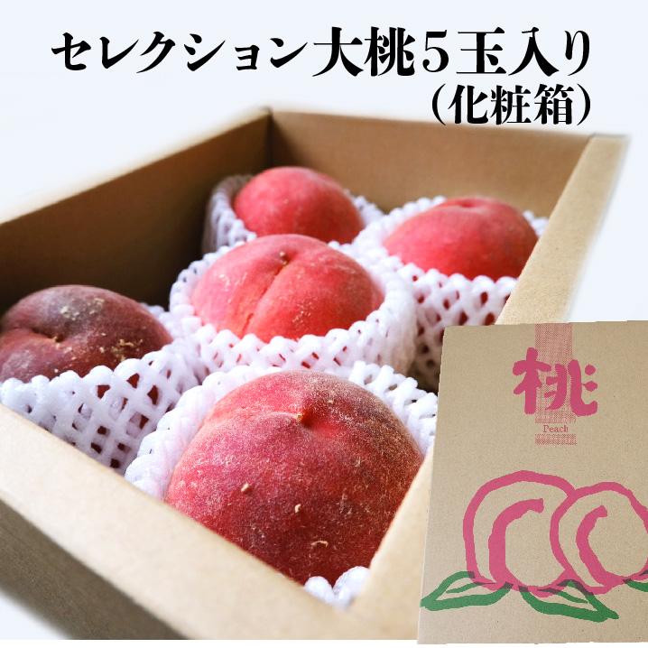 贈答用に。 【長野県産】セレクション大桃 およそ1.2kg 5個入り 化粧箱 送料無料 ギフト おうち フルーツ 果物 ギフト peach もも 季節 旬