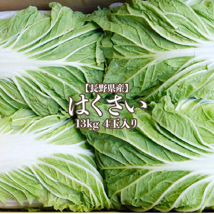 売り込み 美味しい白菜のお届けです 産地応援クーポン対象商品☆ 長野県産 白菜 4玉入り 13kg 1玉3kg 超激得SALE ハクサイ 送料無料 はくさい hakusai