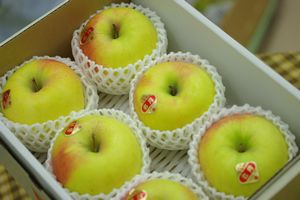 ぐんま名月りんご通販 お歳暮林檎に 隠れた銘品種りんごを販売取寄 格安店 激安卸販売新品 小箱 約5玉~約6玉 他産地 群馬 長野