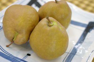 西洋梨メロウリッチ通販 山形県最高糖度の西洋梨を販売取寄 小箱 売却 約5玉~約6玉 低価格化